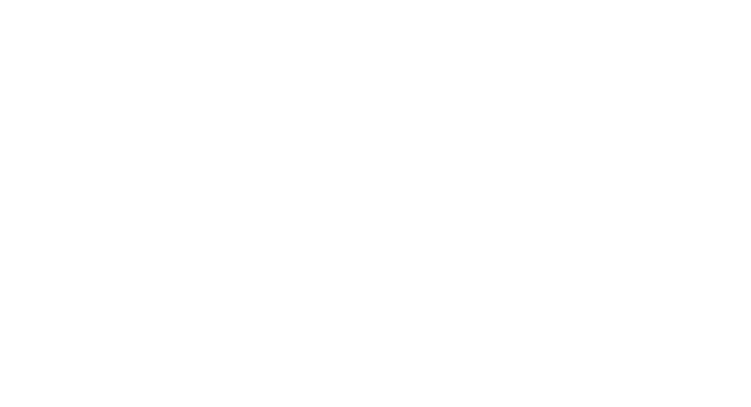 2 inspections top bottom